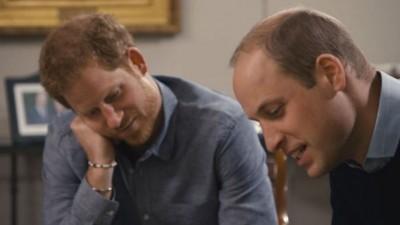 靠這2個字和她 哈利、威廉王子點頭談黛妃