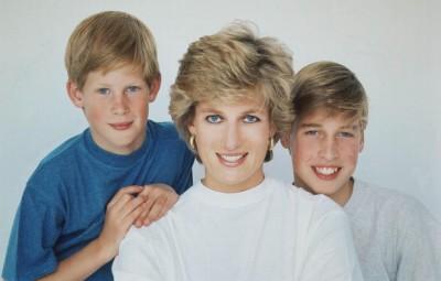 憶起與黛妃的最後一通電話 威廉與哈利王子懊悔抱憾終生
