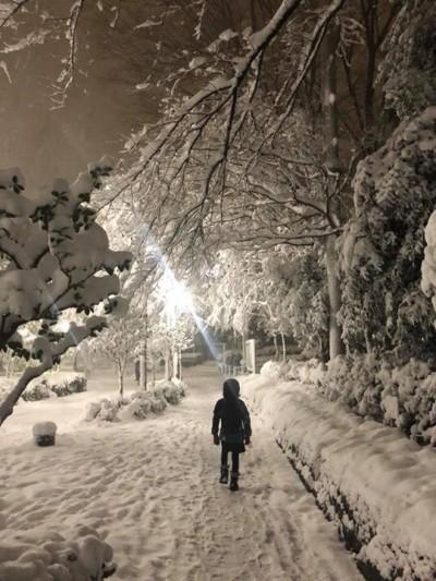 日本東京暴雪來襲    吳淡如的房子慘變這樣