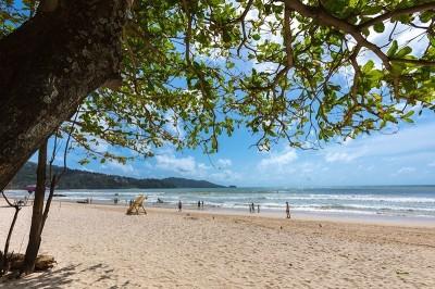 響應環保永續發展  普吉島將推「無泡沫無塑膠」新措施