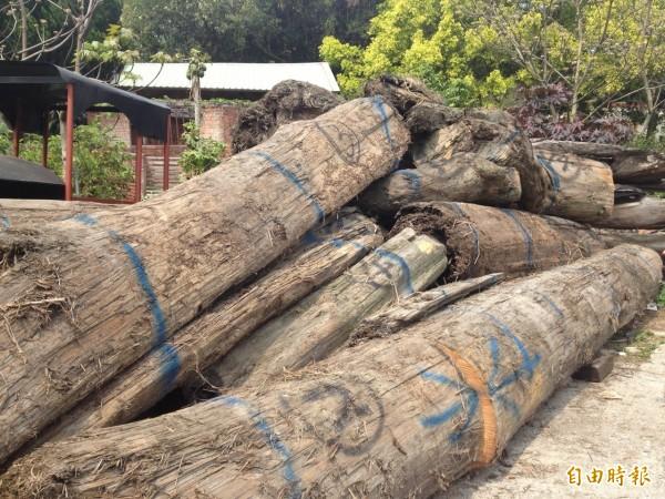 底部標記2號的木材是檜木。(記者蔡政珉攝)