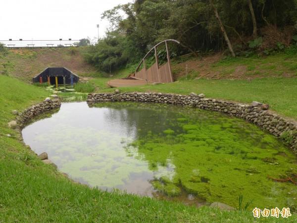 走入真愛森林步道路線後,會遇上「馬偕池」,植物的豐富生命力清晰可見。馬偕博士熱愛台灣這片土地,當年就曾繪製北台灣植物、動物和礦物地圖。(記者李雅雯攝)