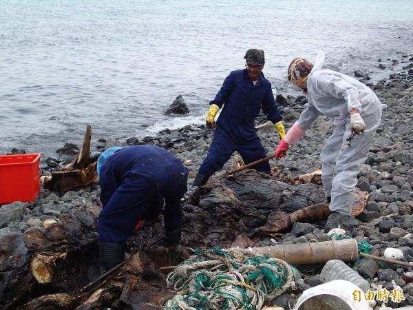 鯨豚採骨肉分離方式處理取出骨骼後肉直接進行掩埋。(記者劉禹慶攝)