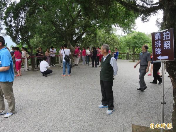 日月潭玄光寺地標石太熱門,管理單位還立牌子呼籲遊客排隊拍照,但仍有人不守規矩插隊。(記者劉濱銓攝)