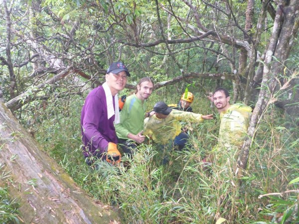 搜救人員於新北市玫瑰西摩山往茶墾山附近尋獲林姓老翁。(記者李容萍翻攝)