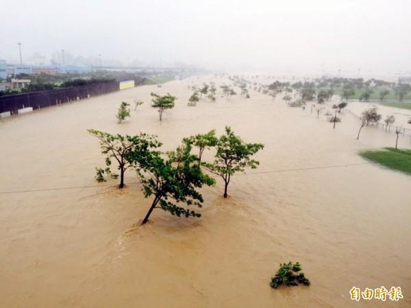 大漢溪水暴漲,浮洲橋下「浮洲藝術河濱公園」成汪洋一片。(記者陳韋宗攝)