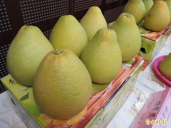 林福田所生產的文旦「酸甘甜」全俱備。(記者蔡文居攝)