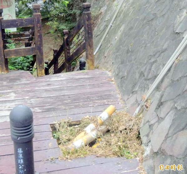 集集登天步道園區部分木質護欄及地板腐朽。(記者謝介裕攝)