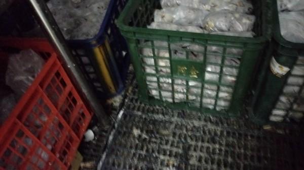 全家福海鮮餐飲的蔬菜置於地面。(台北市衛生局提供)