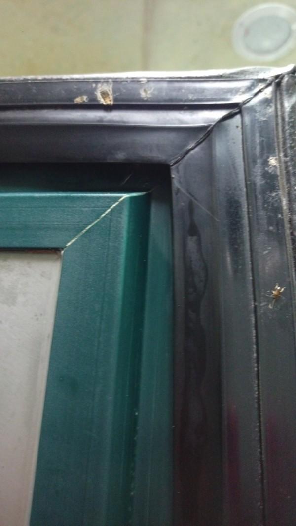 全家福海鮮餐飲的冰箱門上發現蟑螂卵。(台北市衛生局提供)