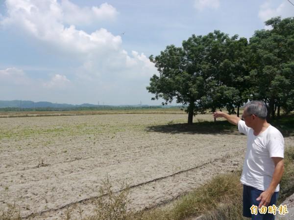 水利署計畫在美濃吉洋地區進行治水,地方擔心高屏大湖死灰復燃。(記者黃佳琳攝)