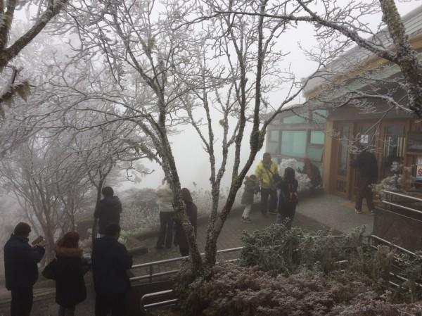 遊客出外賞景。(記者江志雄翻攝)