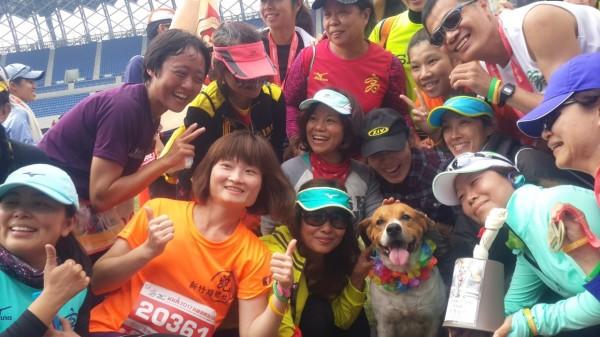 大黃狗「黃檸檬」是馬拉松賽的人氣王,不少跑友爭相與牠合影。(圖體育處提供)