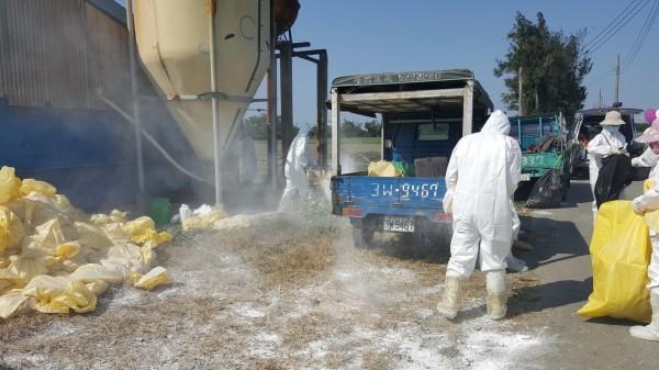 禽流感疫情升溫,雲林縣動植物防疫所呼籲禽農務必配合相關防疫工作。(縣府提供)