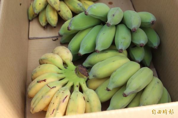 賣菜媽媽謝春枝車上所賣的蔬果,有些是她自己種的。(記者黃美珠攝)