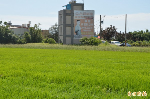 大園地區農地還可見到航空城銷售看板,只是成交量仍屬低檔盤旋。(資料照,記者謝武雄攝)
