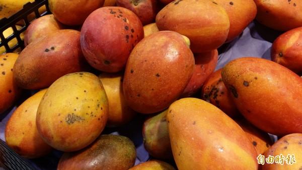 有媒體報導,衛福部放寬農藥「普拔克」在芒果上的殘留容許量。(記者林惠琴攝)