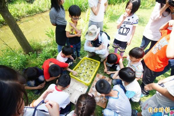 東汴國小學生觀察黃緣螢幼蟲。(記者何宗翰攝)