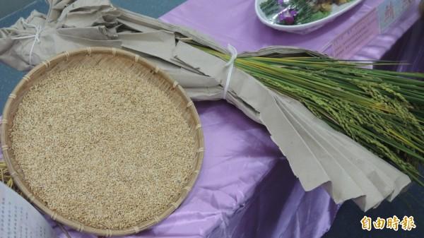 刈稻飯慶豐收活動,行銷屏東稻米。(記者羅欣貞攝)