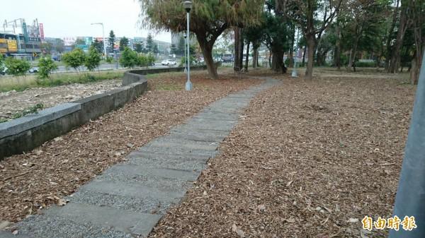 中市建設局要爭取前瞻計畫的預算,要進行中市老舊公園的改建。(記者蘇金鳳攝)