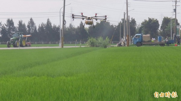 無人機空中噴藥,為農民節省生產成本及人工。(記者廖淑玲攝)