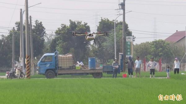 利用無人機,不必下田在田邊就能噴農藥。(記者廖淑玲攝)