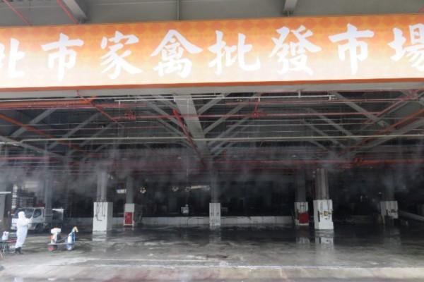 台北家禽批發市場確診已感染禽流感H5N8亞型雞隻。(圖由台北市動保處提供)