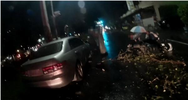 嘉義市世賢路1段636號前突有樹倒塌,一名騎士閃避不及摔倒受傷。(記者王善嬿翻攝)