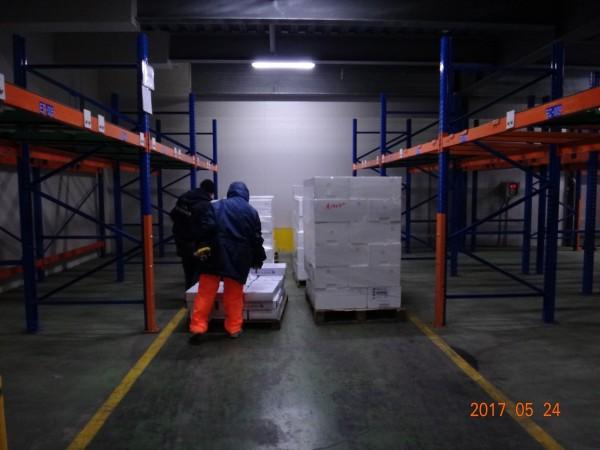 高市衛生局前往仁武某物流倉庫查獲北市福有公司寄庫貯放的逾期「斑節對蝦」2批,要求不得出貨。(衛生局提供)