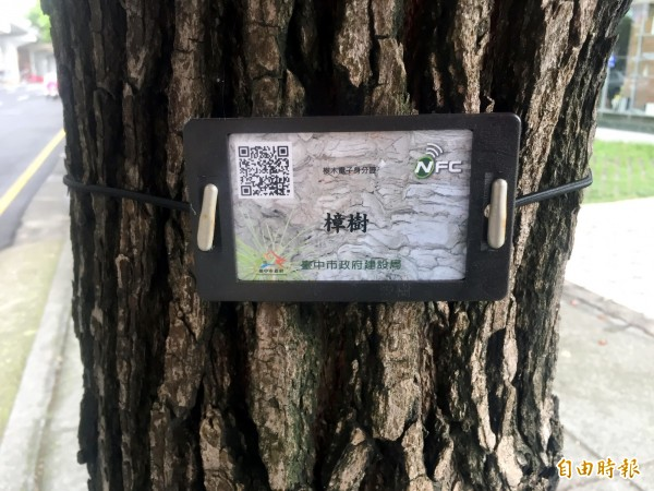 掃描電子身分證上的QR Code,行道樹資訊一目了然。(記者張菁雅攝)
