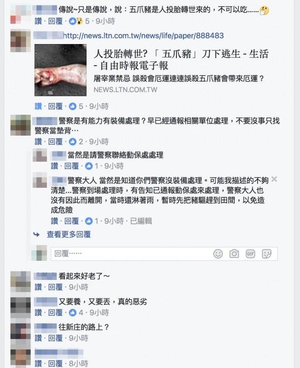 民眾對於「五爪豬」,傳說議論紛紛。(翻攝臉書二林人的大小事)