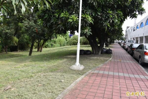 國民運動中心游泳池旁的低地,市公所爭取代管。(記者葉永騫攝)