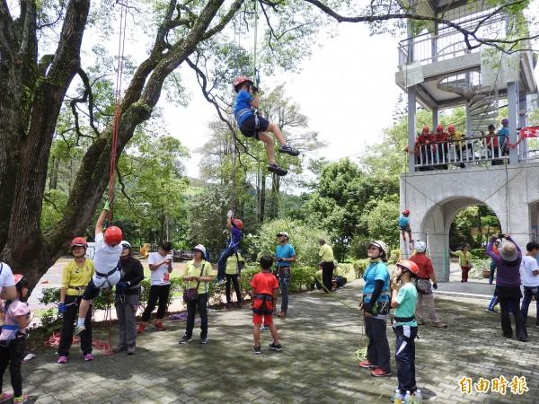 透過器材輔助,小朋友可以自行攀上數公尺高的大樟樹。(記者佟振國攝)