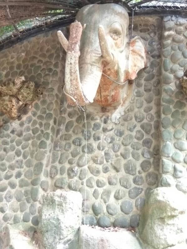 新竹市文化局與文史工作者針對新竹公園內古文物進行會勘,包括石虎石馬和紀念碑文等有文資價值的古文物將會予以保留,並進行文資身分審議及認定。(照片由新竹市府提供)