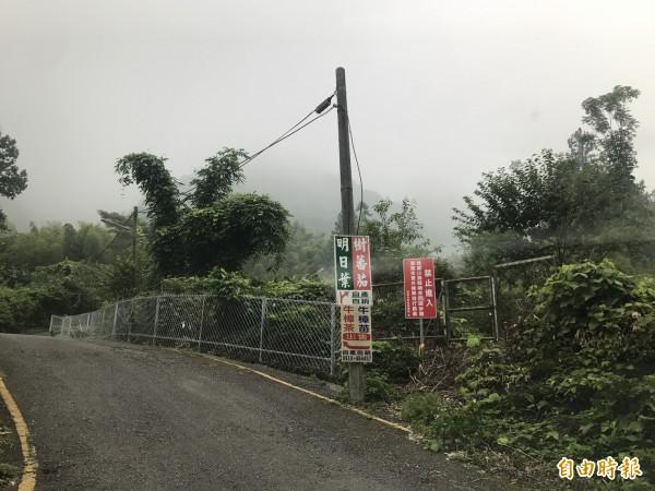 基於安全考量,溪頭自然教育園區架設圍籬封閉鳳凰山北嶺登山口。(溪頭自然教育園區)