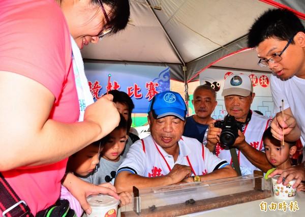 新化豐榮的蟋蟀文化季首度移師老街鬧區,展開精彩的擂臺賽對決。(記者吳俊鋒攝)