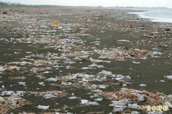 未清理前的四鯤鯓海灘。(記者蔡文居攝)