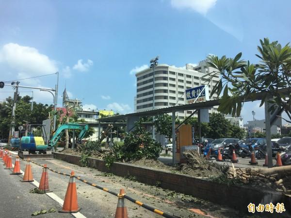 屏東夜市停車場整建,成排的樹木被亂砍。(記者葉永騫攝)
