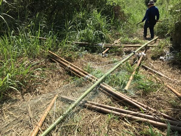 苗栗警方拆除在山區架設的網鴿鳥網。(記者張勳騰翻攝)
