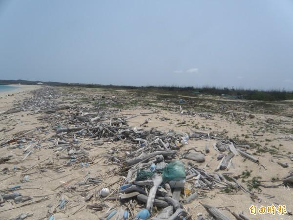 原本湖西龍門後灣沙灘,漂流木堆積如山髒亂不堪。(記者劉禹慶攝)