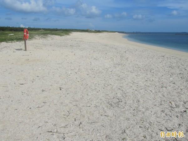 海廢示範處理區的龍門後灣沙灘,重回黃金海岸的美名。(記者劉禹慶攝)