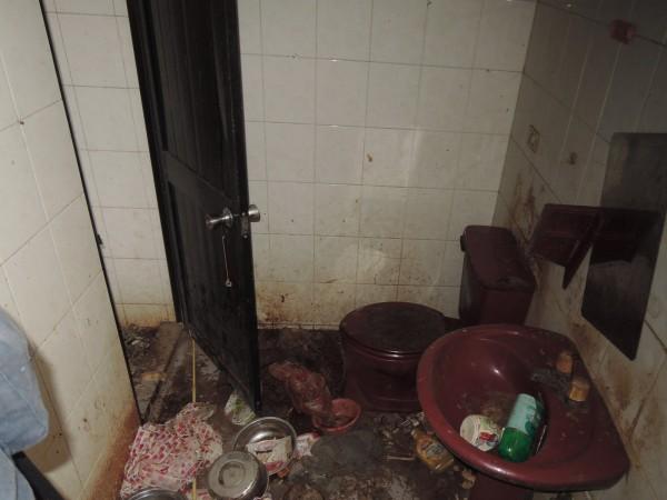 14隻貓遭關在手提籠內明顯被餓死,民宅內環境髒亂不堪。(基隆市動物保護防疫所提供)