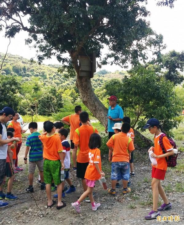 居民製作蝙蝠屋掛在樹下,教育民眾愛護生態。(記者陳文嬋攝)