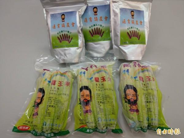 推彩虹玉米,通霄鎮農會再簽 5年專利(記者蔡政珉攝)
