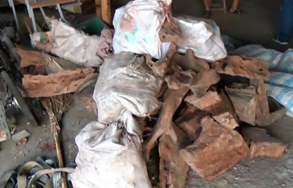 朱男家被搜出牛樟木326公斤。(南投檢方提供)
