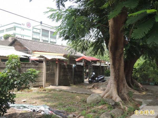 竹東林場宿舍群約十餘棟尚有人居住。(記者廖雪茹攝)