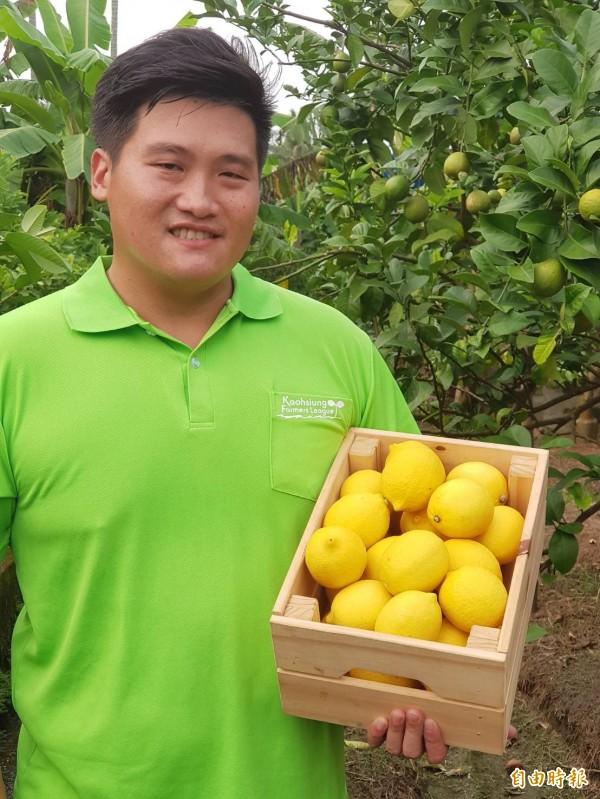 高雄型農莊承翰以植物特性氣體調節,把種出的綠檸檬轉變為黃檸檬。 (記者陳文嬋攝)