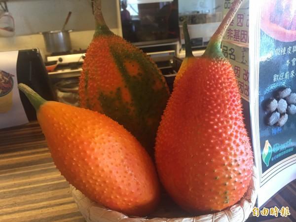 木虌果成熟是橘紅色。(記者張存薇攝)