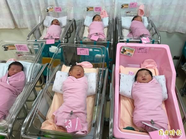 在新竹國泰醫院誕生3女1男的4名國慶寶寶。(記者蔡彰盛攝)