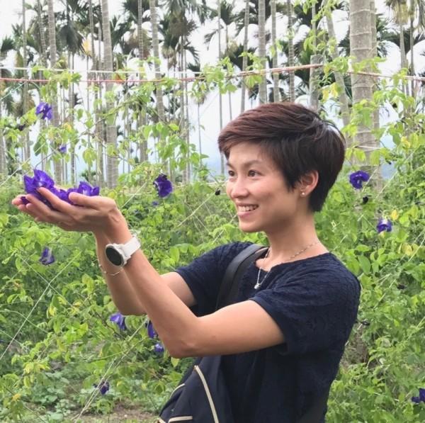 南投縣魚池鄉農民在檳榔樹下栽種蝶豆花。(圖由南投縣政府觀光處提供)